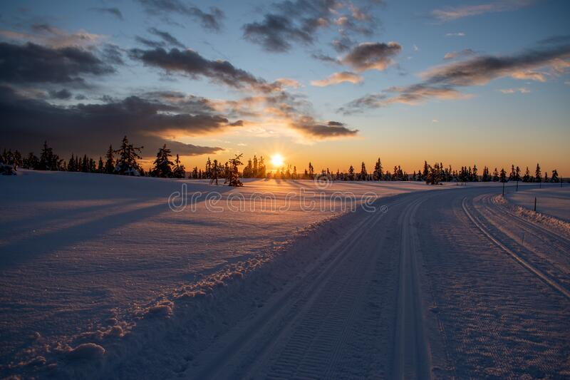 Sunrise on hedmarksvidda in Norway with skiing tracks. Snow covered ground with a lot of snow royalty free stock images