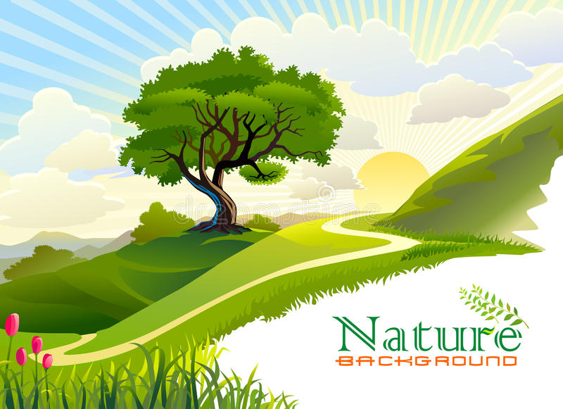 Sunrise in the hills and lonely tree stock illustration