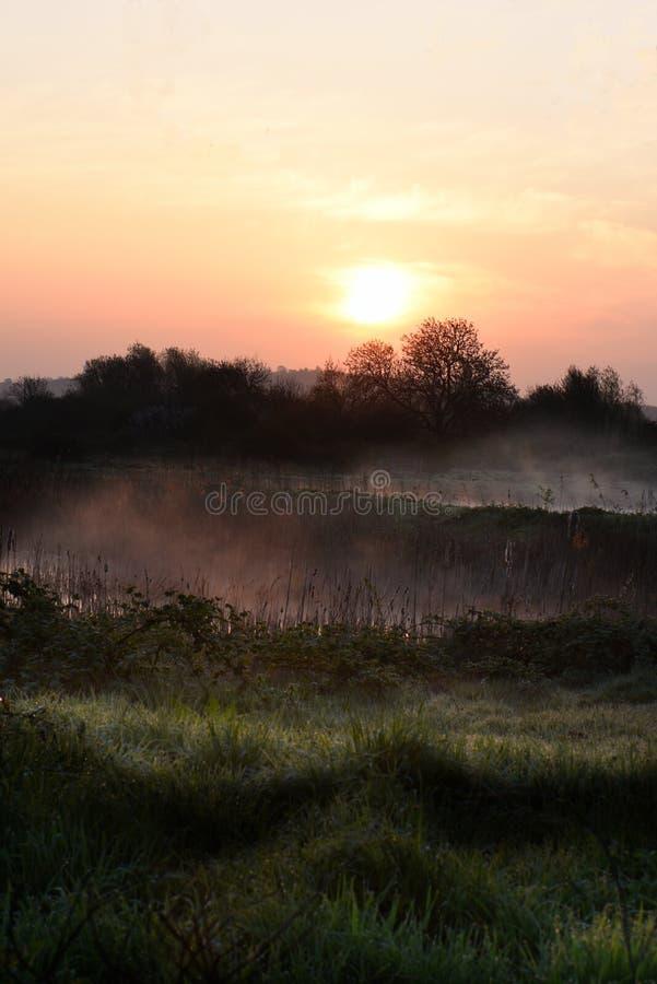 Sunrise II royalty free stock images