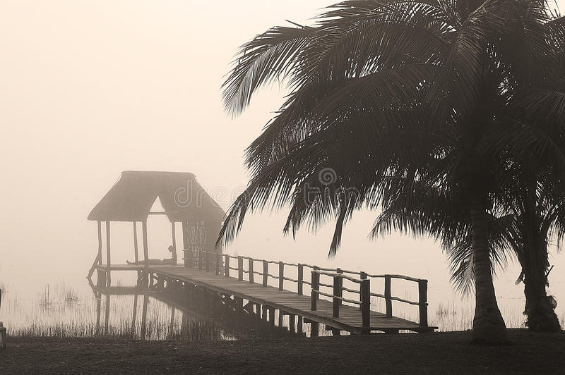 Sunrise on the lake. Quite morning mist on the lake, Lagoon Bacalar, with a pier and palm trees in the foreground royalty free stock image