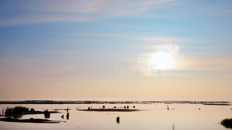 Sunrise on the lake. Early summer calm morning. Blue sky painted in yellow-purple tones. Shoals with sprouted grass. A serene, deserted atmosphere royalty free stock photos
