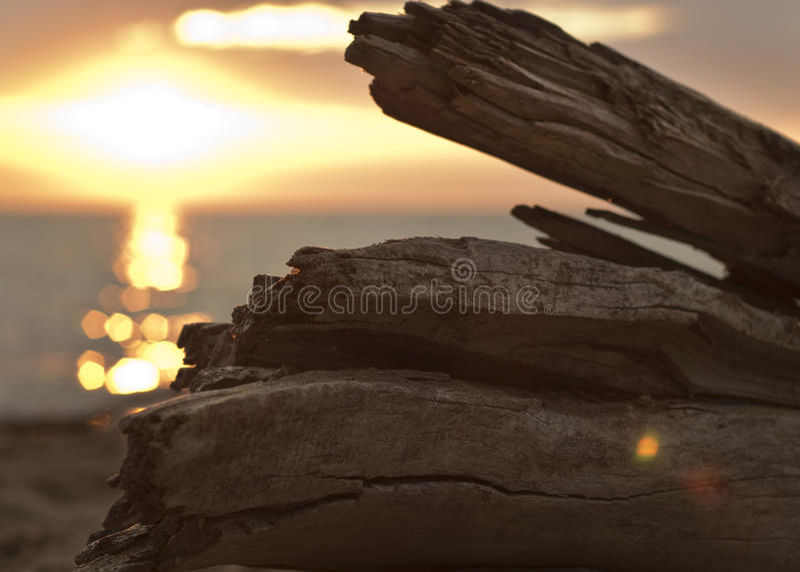 Sunrise on Lake Michigan. Orange sunrise on Lake Michigan as seen from behind a wave-battered log stock images