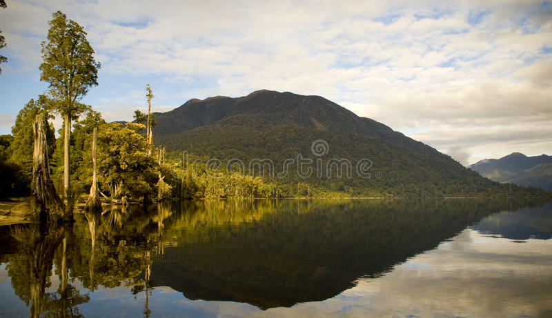 Sunrise Lake Reflections. Forest reflections on lake edge with morning light stock photo