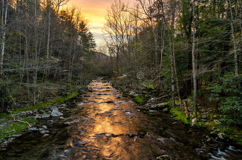 Sunrise, little River, great Smoky Mountains. A beautiful spring sunrise over the Little River Near Elkmont in the Great Smoky Mountain National Park royalty free stock photography