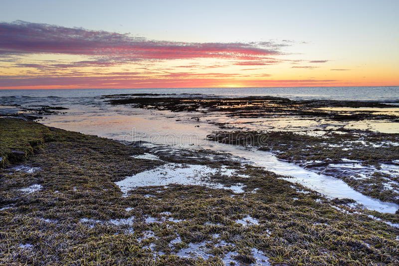 Sunrise at Long Reef Australia. Just before the sun pops up over the horizon at Long Reef, Collaroy Australia. Low tide royalty free stock images