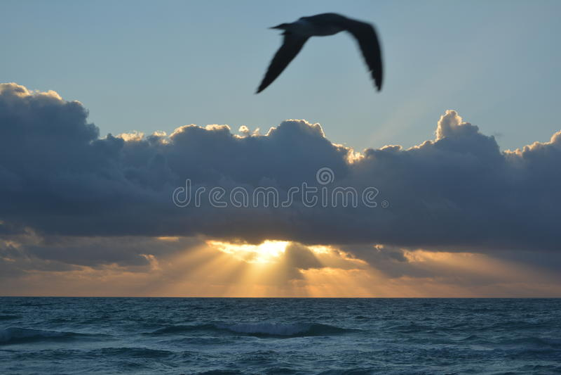 Sunrise on Miami Beach stock images