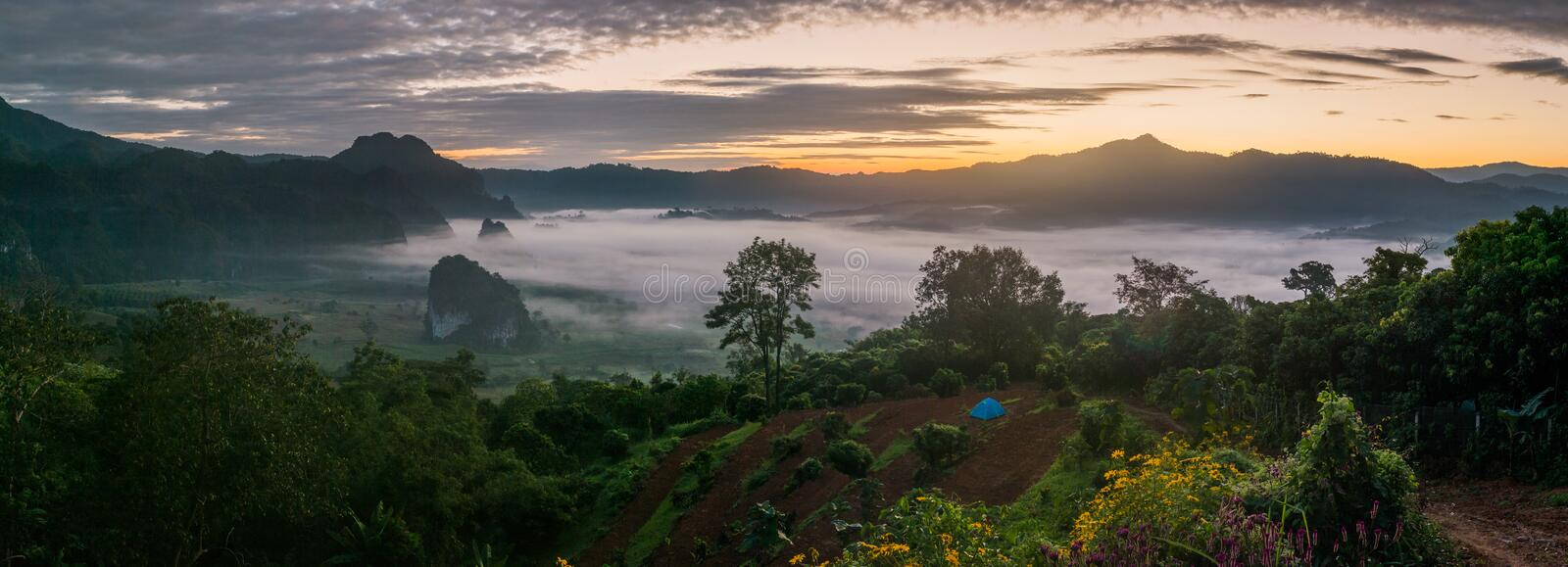 Sunrise and The Mist with Mountain Background in the morning, La. Ndscape at Phu Langka, Payao Province, Thailand royalty free stock images