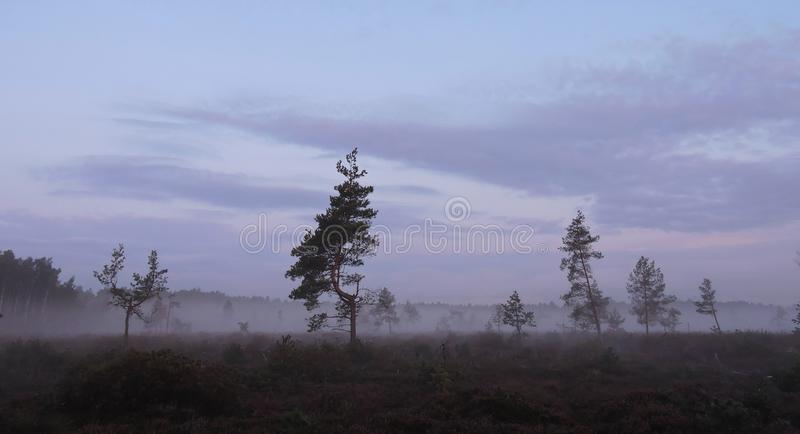 Dark sunrise, Lithuania stock photos