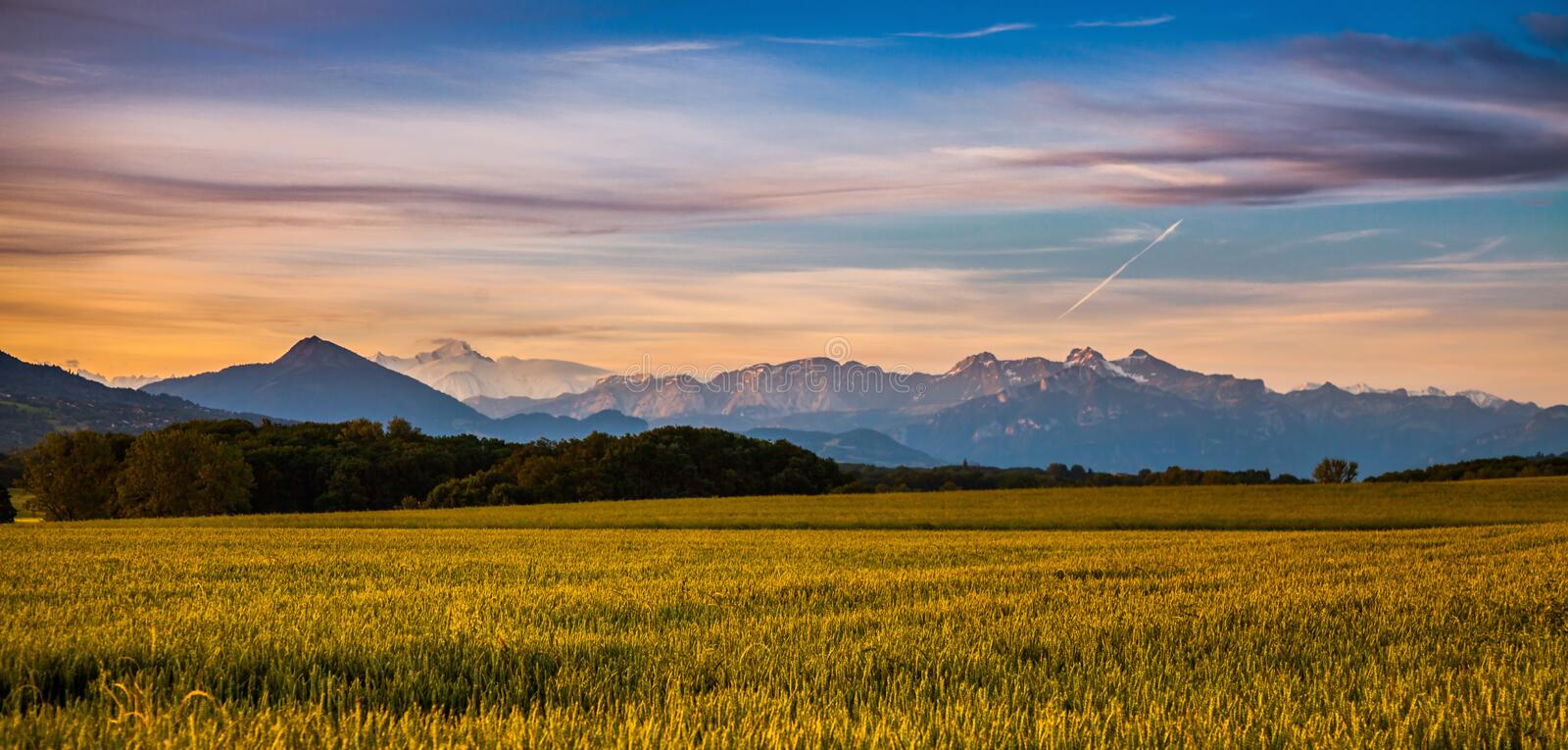 Sunrise and Mont Blanc. Sunrise and the France's Mont Blanc with a wheat field in the foreground stock photography