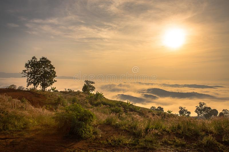 Sunrise with morning view royalty free stock image