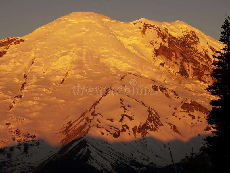 Download Sunrise Mount Rainier stock image. Image of prow, northwest - 20558025