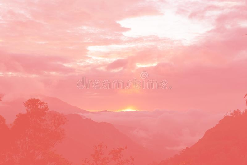 Sunrise in the mountains toned in living coral, color of the year 2019. Sunrise in the mountains, palm trees silhouette toned in living coral, color of the year stock image