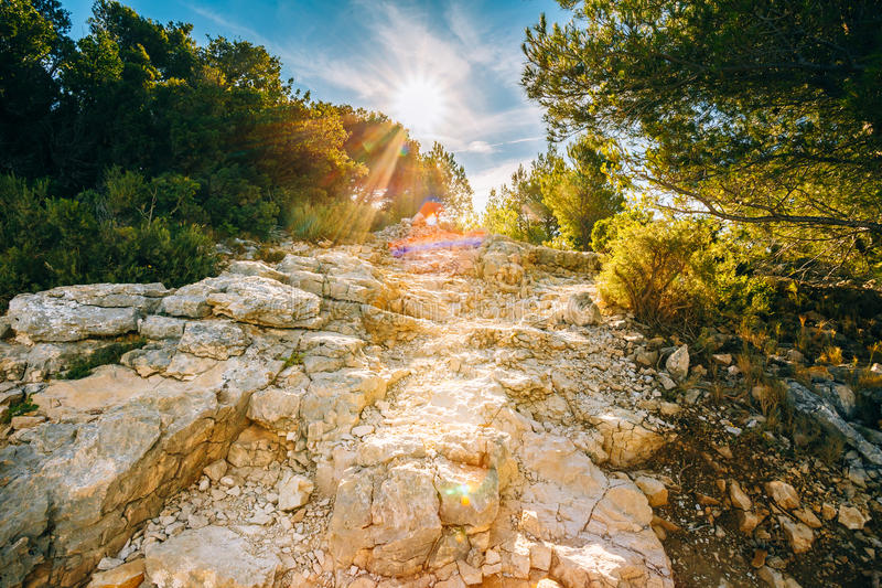 Sunrise over beautiful nature of Calanques on the azure coast of. France. High bright cliffs in sunlight under blue sunny sky. Sunset over rocky path, way stock photo