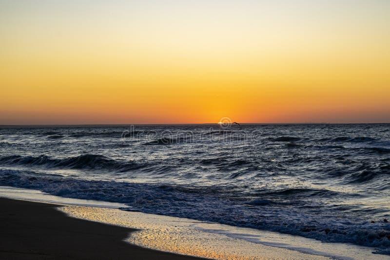 Sunrise over the Black sea, waves on the sandy beach.  stock photography