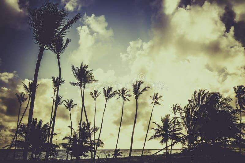 Sunrise over Caribbean sea stock image