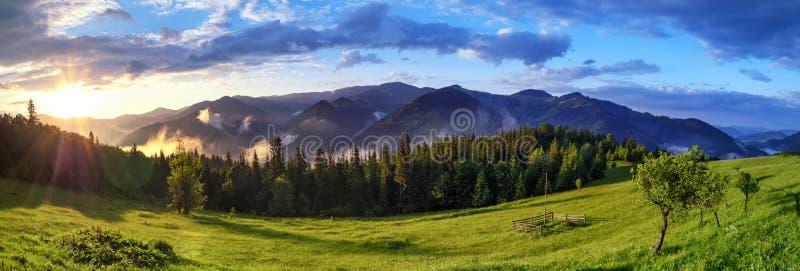Sunrise over Carpathian mountains panoramic landscape. Alpine nature background royalty free stock photo