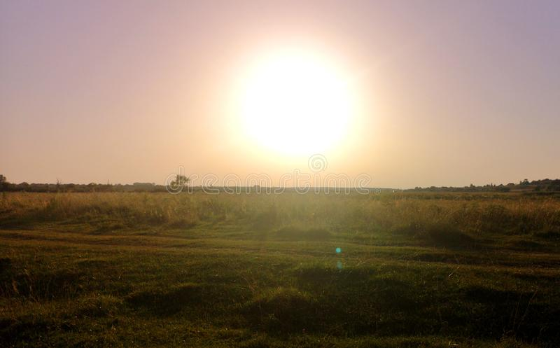 Sunrise over the corn field stock photos