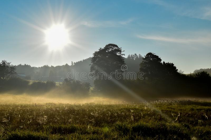 Sunrise over Danish meadow! stock photography