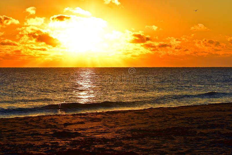 Sunrise over the east coast of Florida. Beautiful golding sunrise with yellow and orange clouds decorates the morning sky stock photo