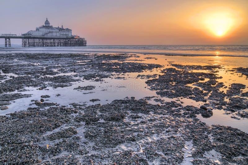 Sunrise Over Eastbourne Pier Stock Image