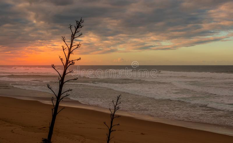 Sunrise over an empty beach. With a cloudy sky image with copy space in landscape format stock images