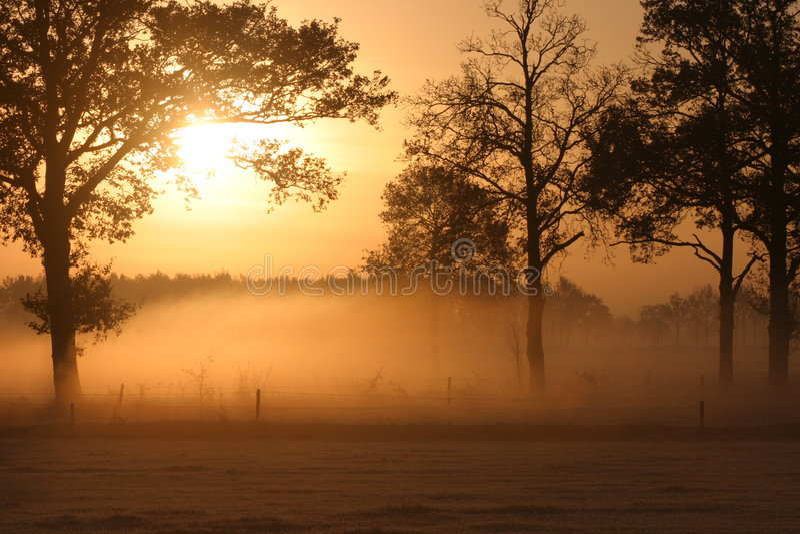 Sunrise over foggy meadow stock image