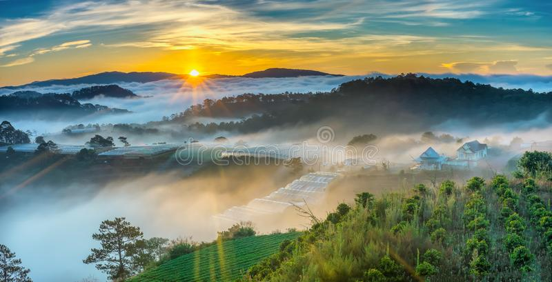 Sunrise over hillside as the sun rising from horizon reflect light bright yellow sky. Below cloudy mist covered valleys flooded pine forests create impressive royalty free stock photography