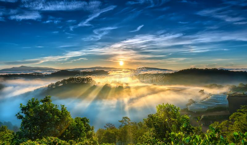 Sunrise over hillside as the sun rising from horizon reflect light bright yellow sky. Below cloudy mist covered valleys flooded pine forests create impressive stock image