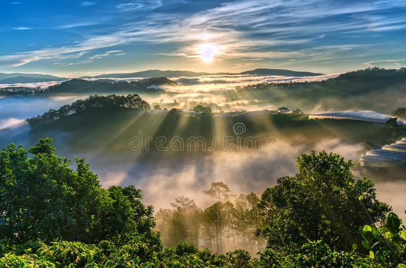 Sunrise over hillside as the sun rising from horizon reflect light bright yellow sky. Below cloudy mist covered valleys flooded pine forests create impressive stock photos
