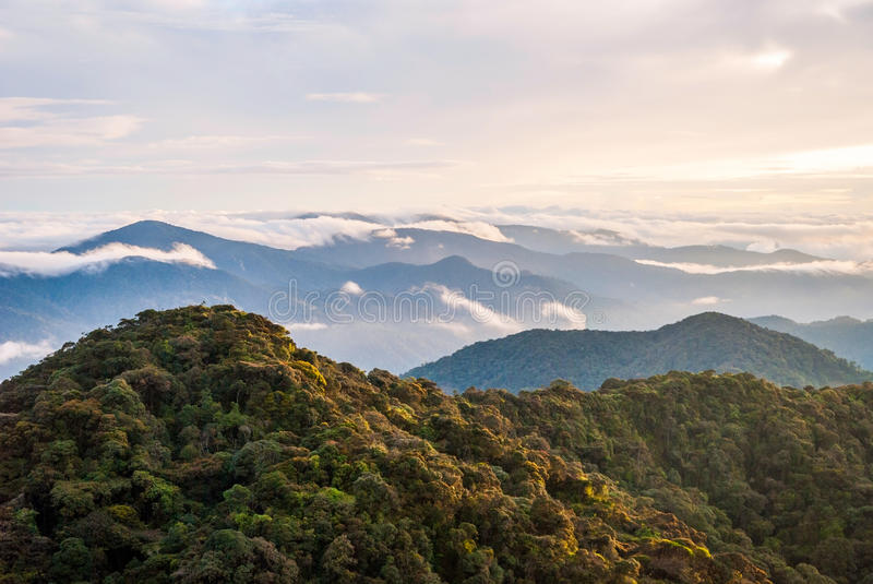 Sunrise over jungle in cameron highlands, Malaysia royalty free stock photo
