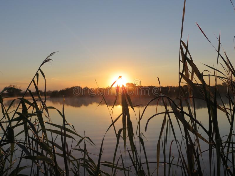 Sunrise over the lake. RnIn this photo you can observe a beautiful summer sunrise over the lake stock photo
