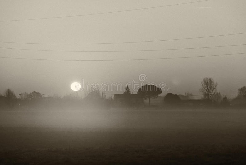 Sunrise over meadows with haze in winter royalty free stock photo