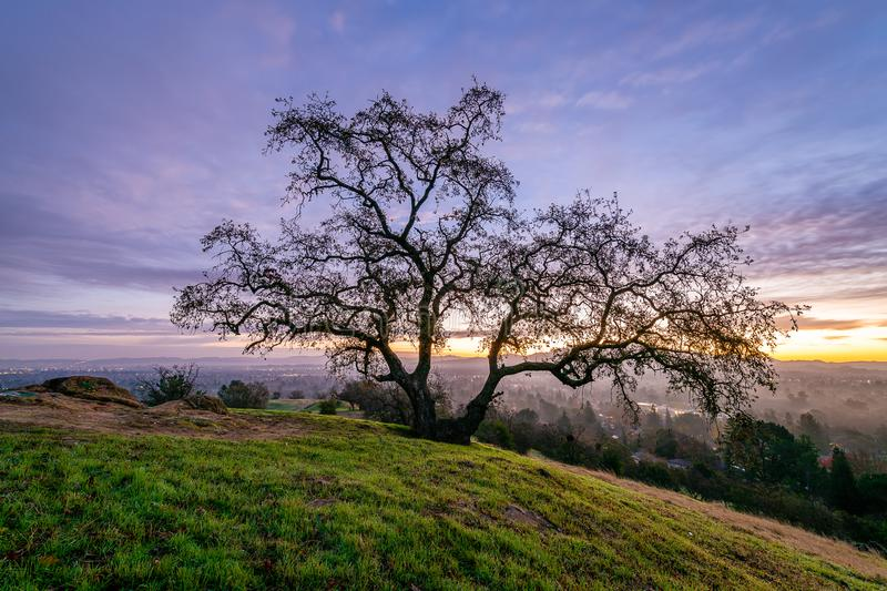 Sunrise over Mount Diablo and the East Bay. The sun rises over Mount Diablo, a geographic landmark to California`s East Bay stock photography