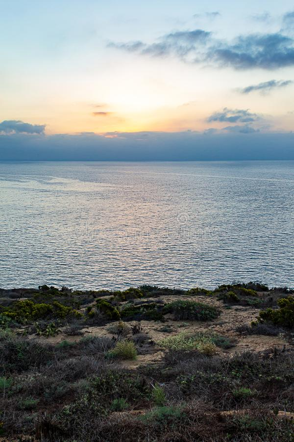 Sunrise over pacific ocean with fog from cliff with plants royalty free stock photography