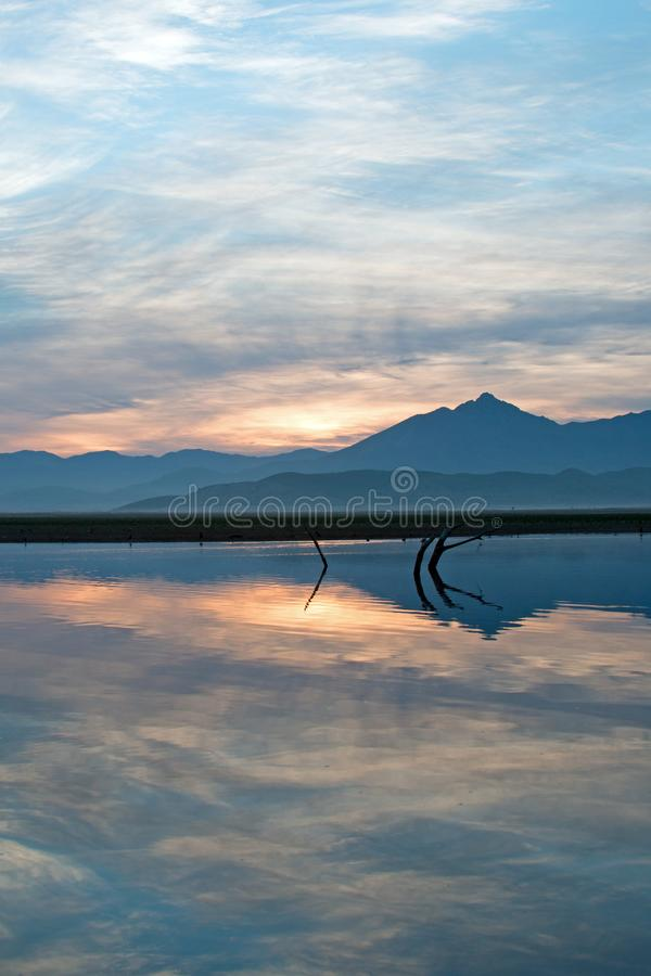 Sunrise over partially submerged dead tree branches in Lake Isabella in the Sierra Nevada mountains in central California USA royalty free stock image