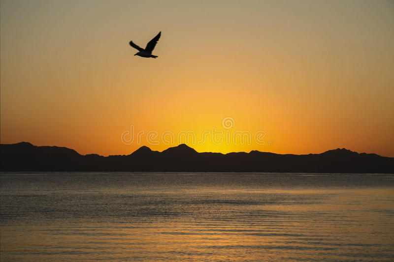 Sunrise over the Sea of Cortez stock photography