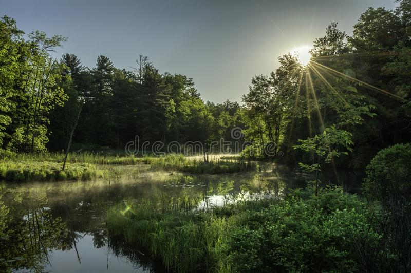 Sunrise over a swamp in the Adirondacks New York. Sunrise and mist over a swamp in the Adirondacks New York royalty free stock photography