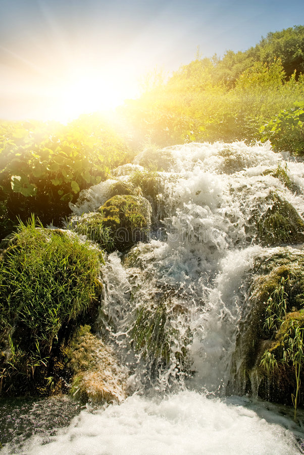 Download Sunrise over waterfall stock photo. Image of nature, foliage - 7731540