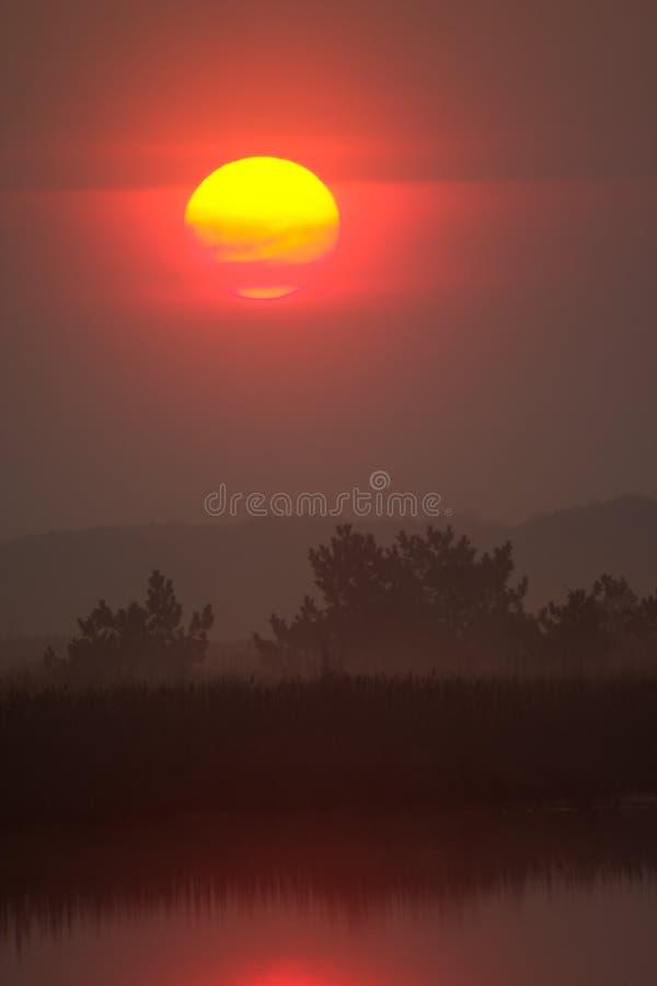 Download Sunrise over wild lake stock image. Image of misty, haze - 1810705