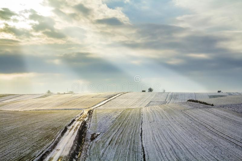 Sunrise over winter green field. Rural landscape. royalty free stock photos
