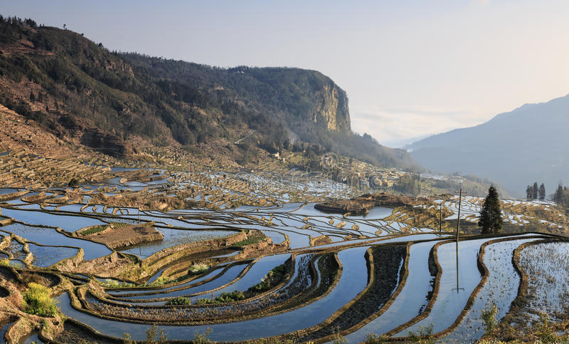 Sunrise over YuanYang rice terraces in Yunnan, China, one of the latest UNESCO World Heritage Sites.  stock photography