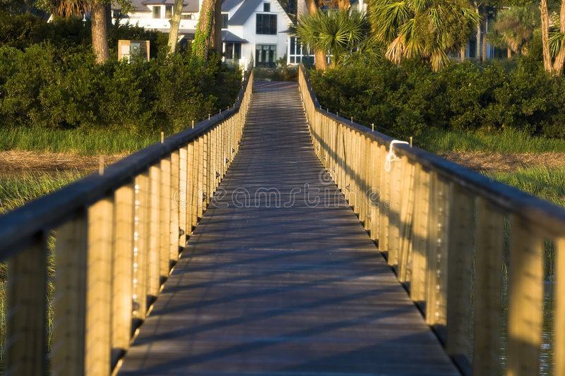 Download Sunrise at Palmetto Bluff stock photo. Image of travel - 7384002