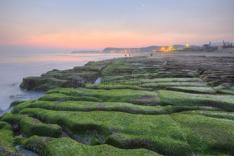 Sunrise by a peculiar rocky beach with dramatic dawning sky. ~ Spring scenery of beautiful Laomei Coast in northern Taiwan with green seaweed ( ulva lactuca ) stock photography