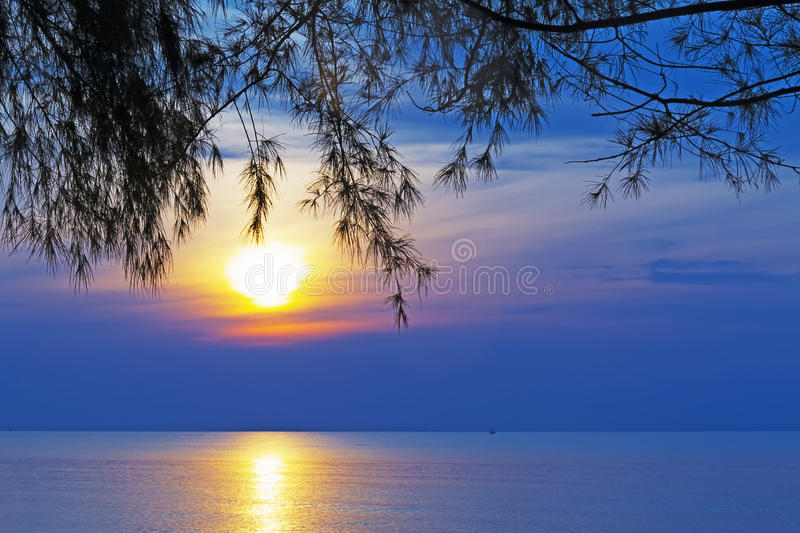 Sunrise and pine. At Ban Krut Beach, Prachuap Khirikhun Province Thailand stock image