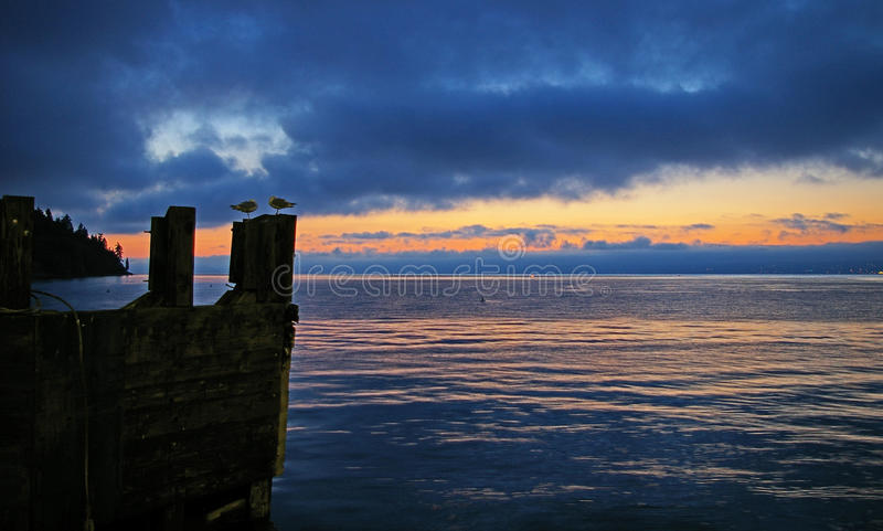 Sunrise, Puget Sound and segulls from Kingston Ferry dock. Seagulls and the beautiful Sunrise from the Kingston Ferry Dock. Located on the Puget Sound waterway royalty free stock photography