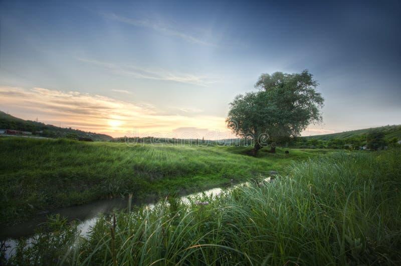 Download Sunrise on river stock photo. Image of nature, beam, horizon - 29972998