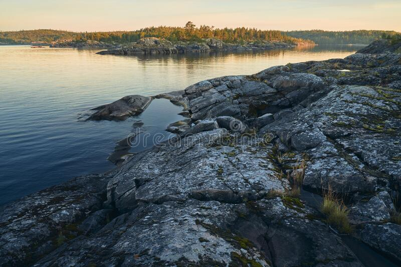Sunrise on a rocky shore. Pine forest in the background stock photo