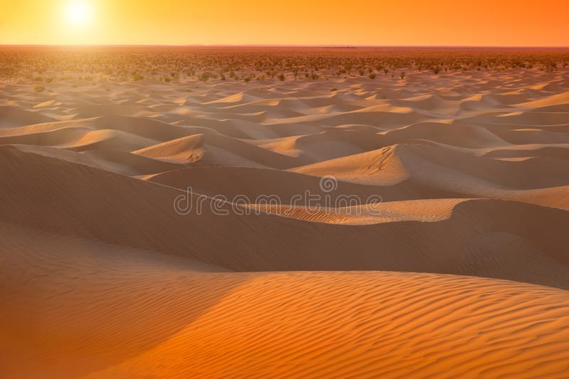 Sunrise in Sahara in Tunisia. Shooting with color filters stock photography