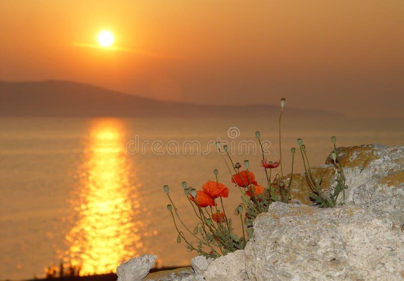 Sunrise By The Sea Free Stock Photo