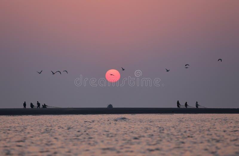 Sunrise on seashore with flying birds. In Kuakata, Bangladesh stock photos